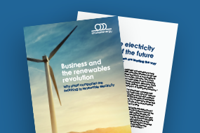 Business and the Renewables Revolution
