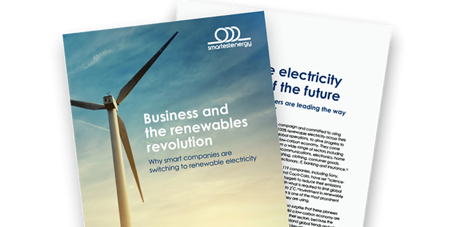 Report: Business and the Renewables Revolution