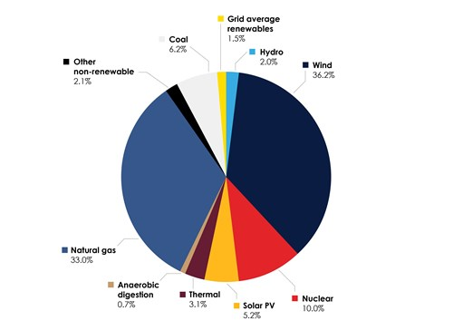 Conventional Fuel Mix Pie Chart
